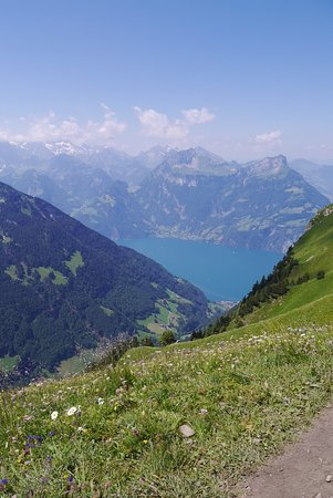 Fronalpstock: The view from the path towards Brunnen