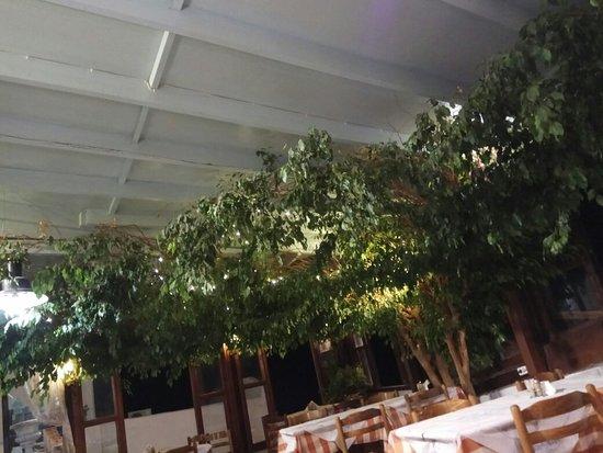 Simos Taverna照片
