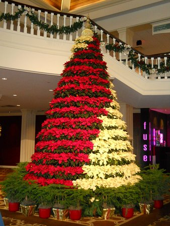 Gaylord Opryland Resort & Convention Center: Thanksgiving at Gaylord