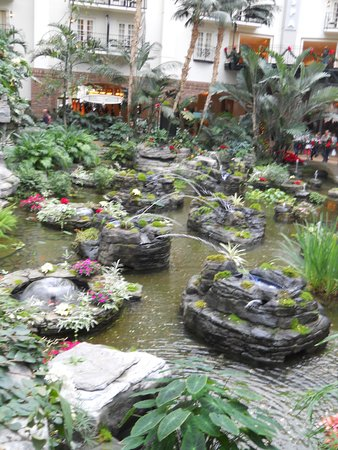 Gaylord Opryland Resort & Convention Center: Hotel ground at Gaylord