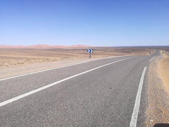 Camel Trekking Excursions照片