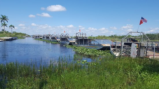 Everglades Airboat Tour & Gator Boys Alligator Rescue Show: Airboats