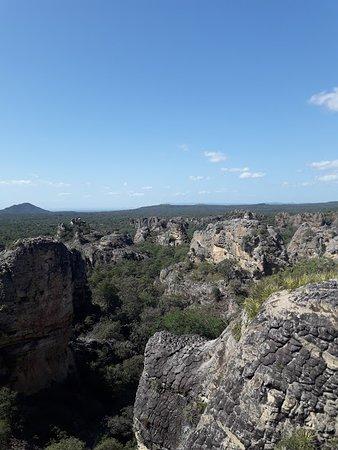 Henriqueta Fortes de Cerqueira Environmental Park照片