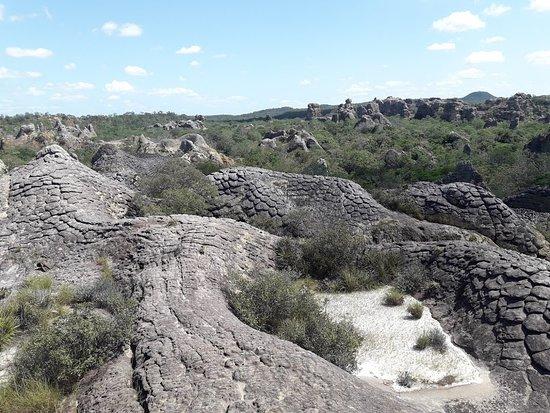 Henriqueta Fortes de Cerqueira Environmental Park