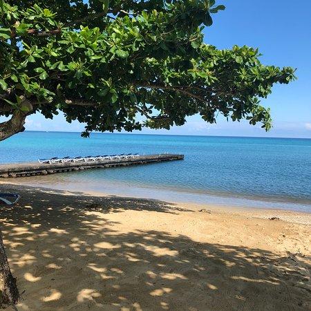 Know Jamaica Tours: photo0.jpg