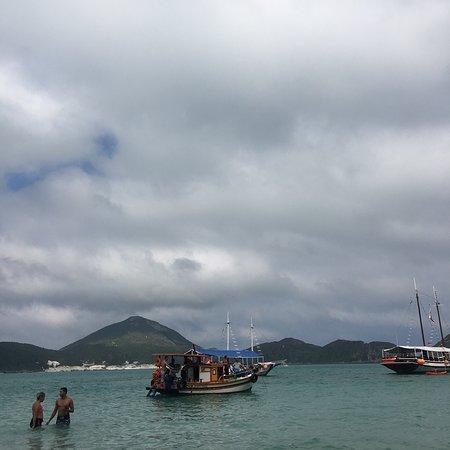 Barco Holandes Voador Black照片