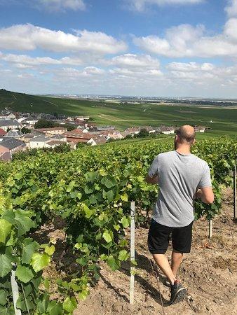 Sacre Wine Tour照片