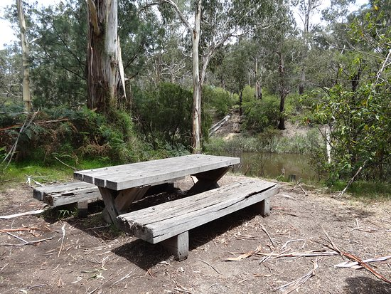 Pound Bend: have a picnic next to the river
