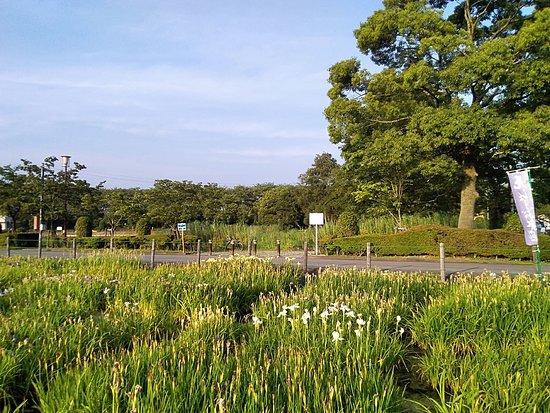 Soneshiro Park