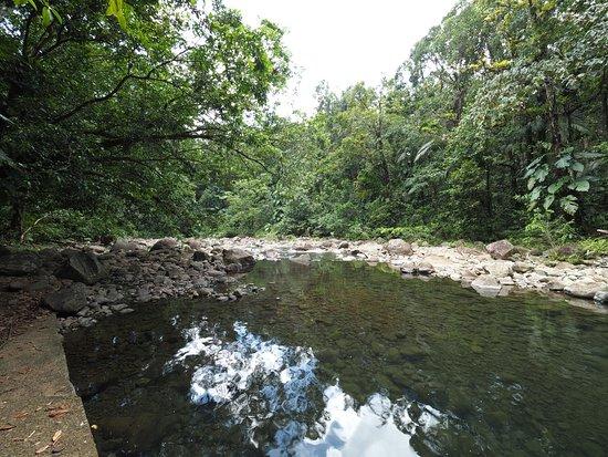 Île Basse-Terre, Guadeloupe: baignade possible à proximité