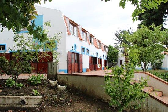 Quinta Pedagogica dos Olivais照片