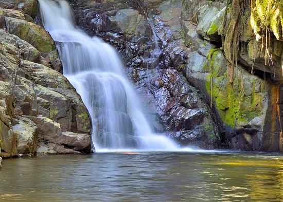 Stoney Creek Trail: Stoney Creek - the largest swimming hole under the falls