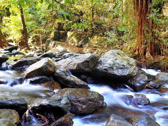 Stoney Creek Trail: Stoney Creek has many rapids