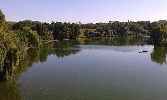 Tineretului Park: The big lake!