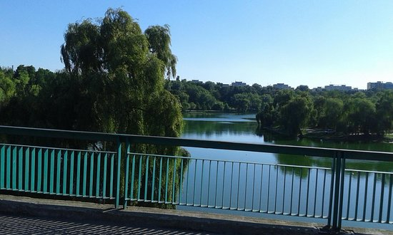 Tineretului Park: Teh bridge!