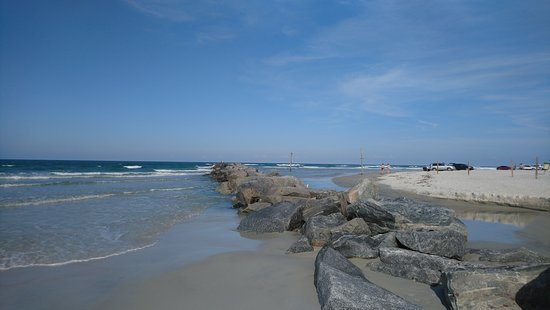 New Smyrna Beach Dog Park