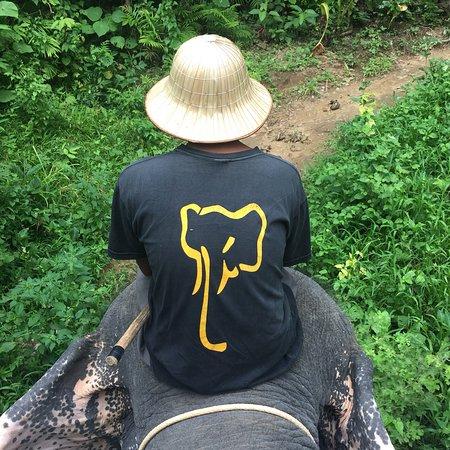 张阁象背旅行照片