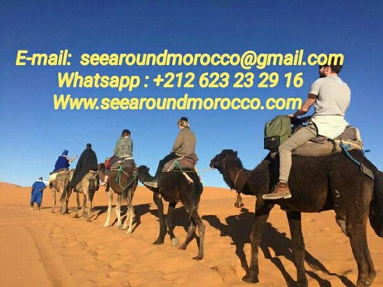See Around Morocco