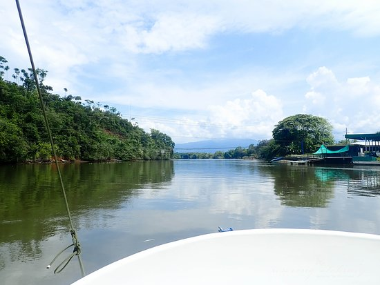 Copa de Arbol Beach and Rainforest Resort: The boat ride to the resort