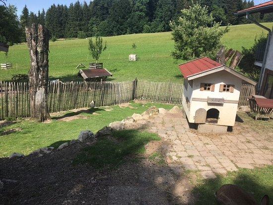 Seimehof: Ein Hasenhaus