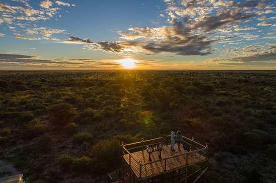 Central Kalahari Game Reserve Photo