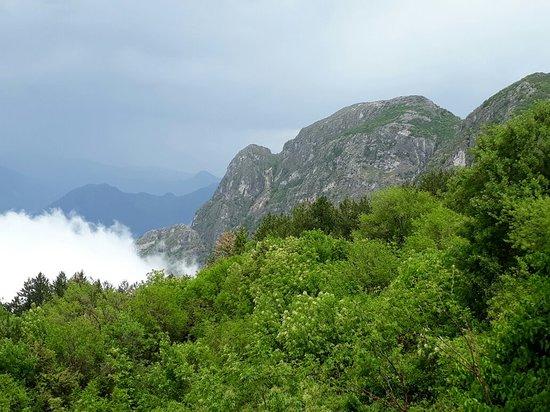 Njegusi, Montenegro: 20180505_113050_large.jpg