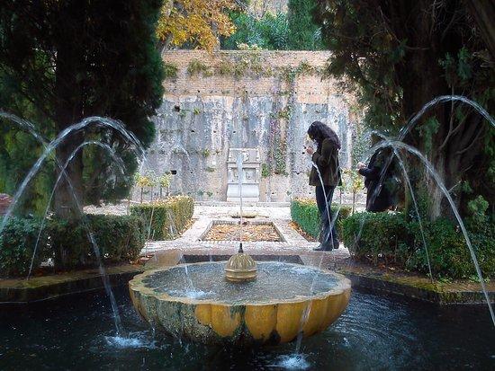 Фотография Alhambra