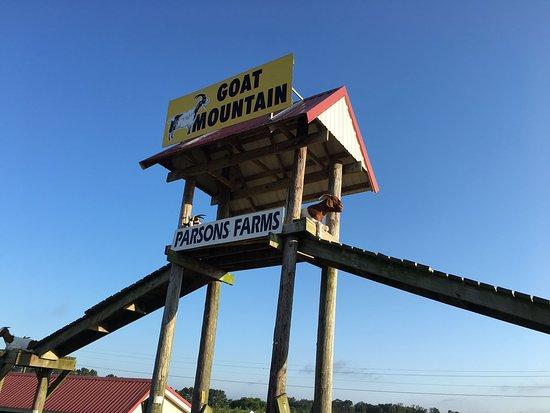 Parson's Farms
