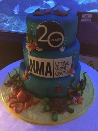 Incredible Aquarium 20Th Birthday Cake Picture Of National Marine Aquarium Funny Birthday Cards Online Inifodamsfinfo