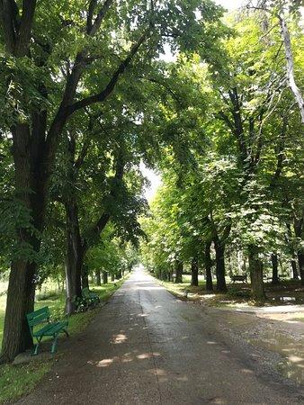 Ilfov County, Romania: IMG_20180701_132730_large.jpg