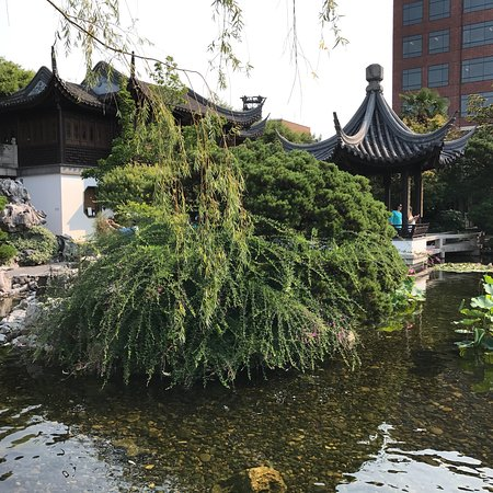 Lan Su Chinese Garden (Portland) - 2018 All You Need to Know Before ...