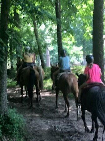 Canyon Creek Horseback Riding Stables: trail riding