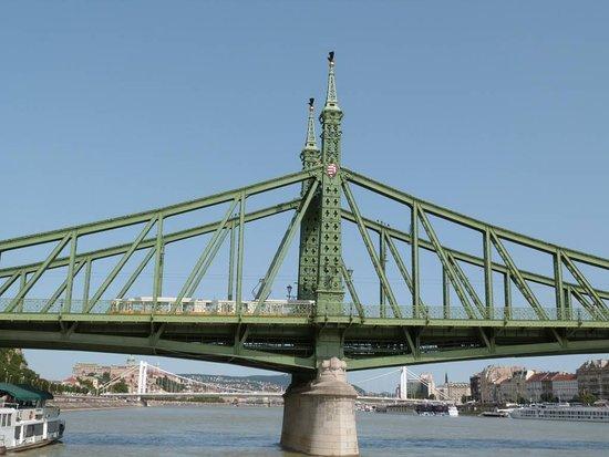 Liberty Bridge (Szabadsag hid)照片