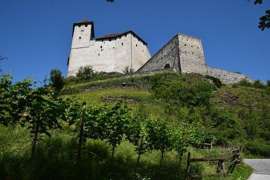 Balzers, Liechtenstein: view from the vineyard