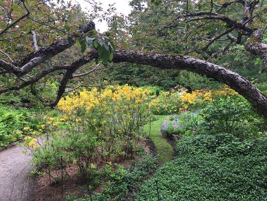 Jardins de Metis / Reford Gardens: Jardins