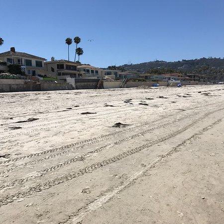 La Jolla Beach & Tennis Club照片