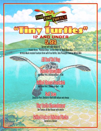 The Tiny Turtle Cocoa Beach