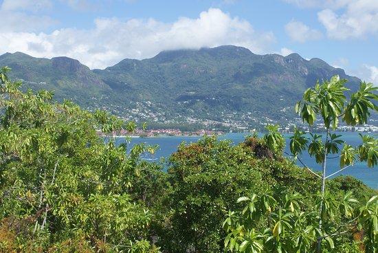 Cerf Island Photo