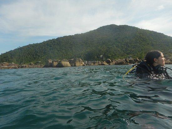 Arvoredo Island照片