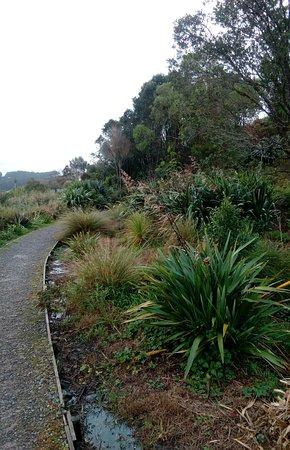 Helensville, Nueva Zelanda: Pathway leading to the Riverbank