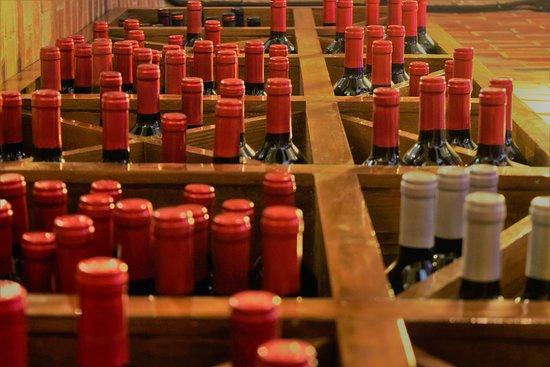 Elizalde Bar-Restaurante: Cava de vinos
