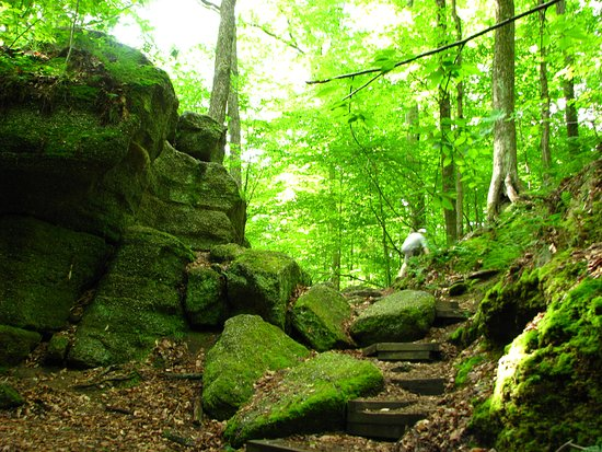 Nelson-Kennedy Ledges State Park照片