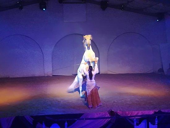 Cabaret Equestre des Sables