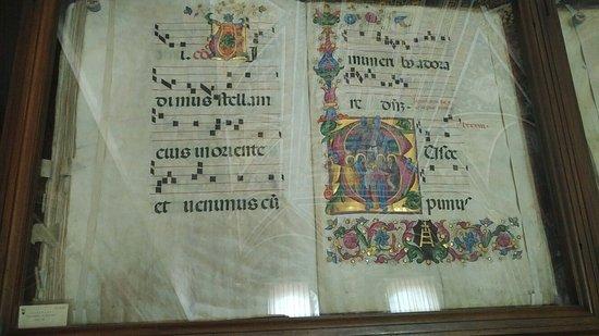 皮科罗米尼家族图书馆照片