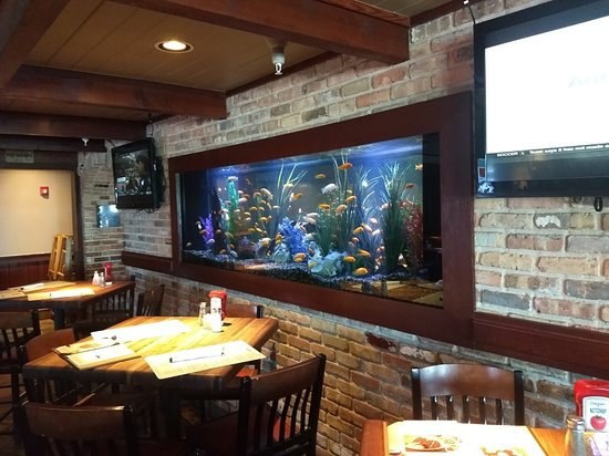 Cheddar's Scratch Kitchen - Picture of