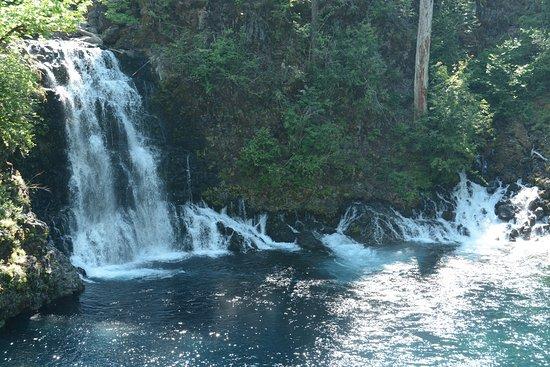 Cascadia, OR: Tamolitch Falls (Blue Pool)