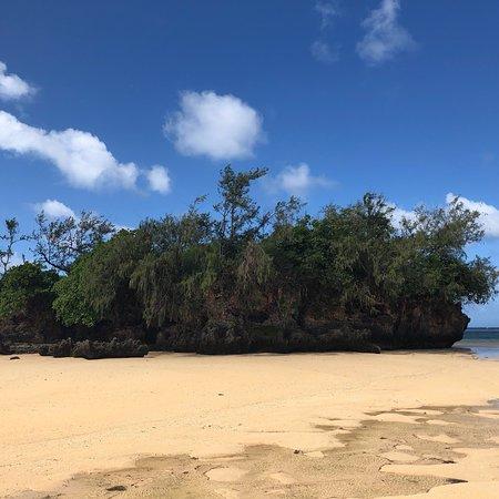 Foto de Ecotrax Fiji