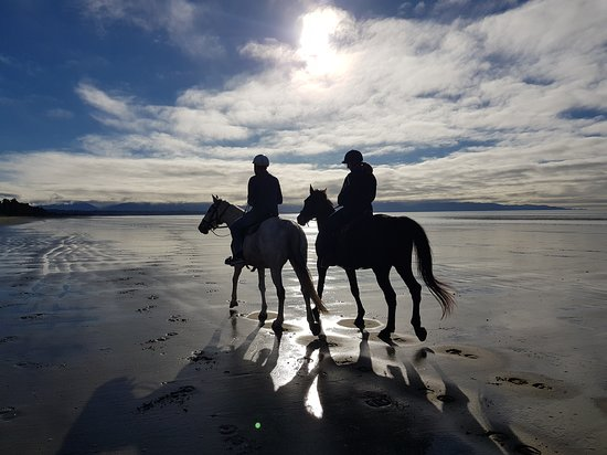Tasman, New Zealand: Unforgetable riding experiences.