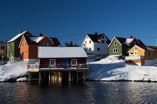 Winter Fototour in kleiner Gruppe...