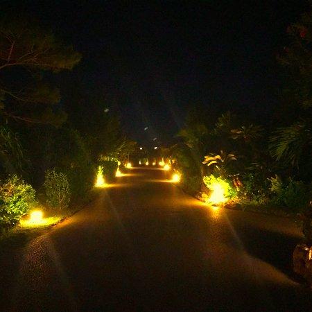 Hotel Alamanda Kohamajima: 小浜島は自然がいっぱいでとても綺麗な星空とビーチがありました😊✨ 心が洗われます❣️ 何も無い幸せを感じられます💕